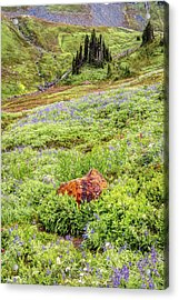 Acrylic Print featuring the photograph Red Rock Of Rainier by Pierre Leclerc Photography