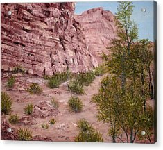 Red Rock Trail Acrylic Print by Roseann Gilmore