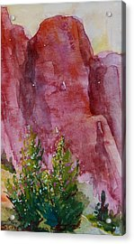 Red Rocks With Two Junipers Acrylic Print by Sukey Watson
