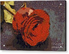Red Rose Abstract Acrylic Print by Shirley Stalter