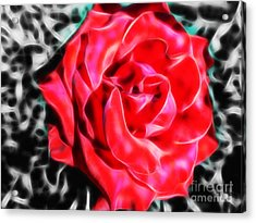 Red Rose Fractal Acrylic Print