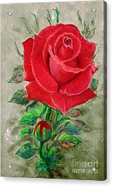 Red Rose Acrylic Print by Jasna Dragun