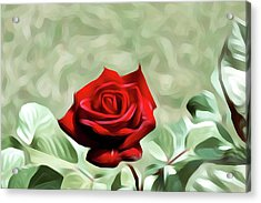 Red Rose Love Image Hd 5225_2 Acrylic Print by S Art