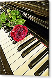 Red Rose On A Piano  Acrylic Print