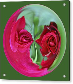 Red Rose Orb Acrylic Print by Bill Barber