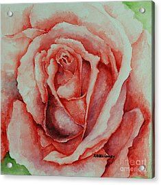Red Rose Acrylic Print by Rachel Lowry