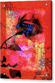 Red Rose Acrylic Print by Robert Ball