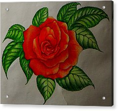 Red Rose Acrylic Print by Ron Sylvia