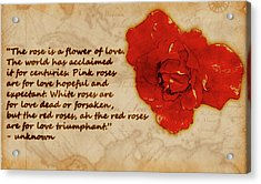 Red Rose Significance Acrylic Print