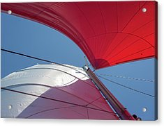 Acrylic Print featuring the photograph Red Sail On A Catamaran 3 by Clare Bambers