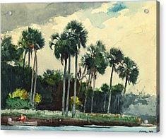 Red Shirt Homosassa Florida Acrylic Print by Winslow Homer