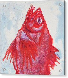 Red Snapper,head  Acrylic Print by Martin Stankewitz
