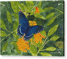 Red Spotted Purple Butterfly Batik Acrylic Print