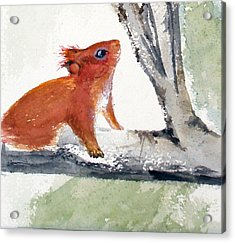 Acrylic Print featuring the painting Red Squirrel by Sibby S