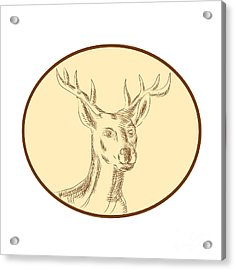 Red Stag Deer Head Circle Etching Acrylic Print by Aloysius Patrimonio