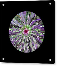 Red Star Thistle Kaleidoscope Acrylic Print