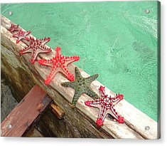 Red Starfish On A Wooden Dhow 2 Acrylic Print