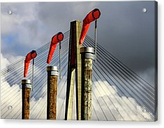Red Subject Acrylic Print