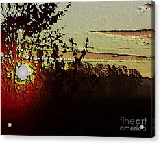 Red Sunset Acrylic Print by Erica Hanel