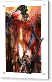 Acrylic Print featuring the mixed media Red Tail by Anthony Burks Sr