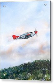 Red Tails Acrylic Print