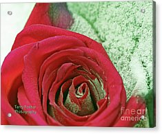Red Acrylic Print by Terry Foster