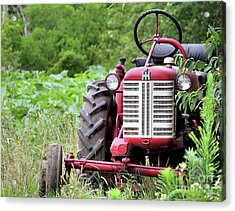 Red Tractor  Acrylic Print by Janice Drew