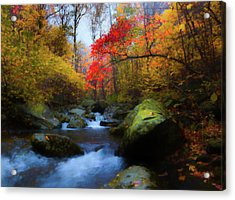 Red Tree In White Oak Canyon Acrylic Print