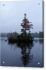 Red Tree Island Acrylic Print by Alison Heckard