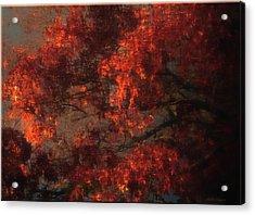 Red Tree Scene Acrylic Print