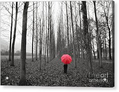 Red Umbrella In An Allee Acrylic Print