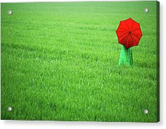 Red Umbrella In Green Field Acrylic Print