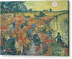 Red Vineyards At Arles Acrylic Print by Vincent van Gogh