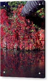 Red Waste Acrylic Print by Jez C Self