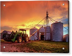 Red Wheat Seed Acrylic Print