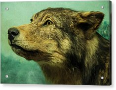Acrylic Print featuring the digital art Red Wolf Digital Art by Chris Flees