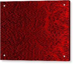 Red.428 Acrylic Print