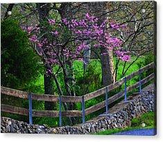 Redbud Corner Acrylic Print by Michael L Kimble