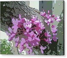 Redbud Tree Acrylic Print