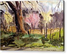 Redbuds And Morels Matted Glassed Framed Acrylic Print by Charlie Spear