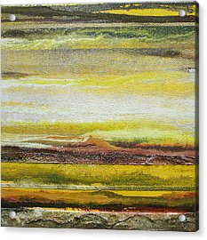Redesdale Rhythms And Textures Series No3 Yellow And Sepia Acrylic Print by Mike   Bell