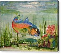 Rainbow Fish Acrylic Print