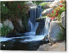 Redhawk Waterfall 5 Acrylic Print by Richard Stephen