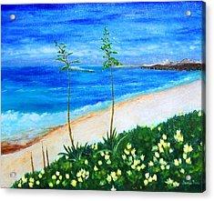 Redondo Beach Acrylic Print by Jamie Frier