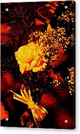 Reds And Yellows. Acrylic Print by Douglas Kriezel