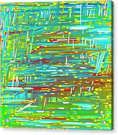 Reedy Pond Acrylic Print by Frank Tschakert