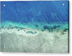 Reef Barrier Acrylic Print