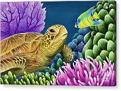 Reef Buddies Acrylic Print