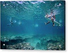 Reef Surfers Acrylic Print by Sean Davey