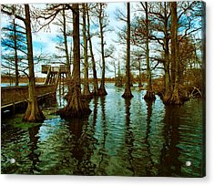 Reelfoot Beauty Acrylic Print by Julie Dant